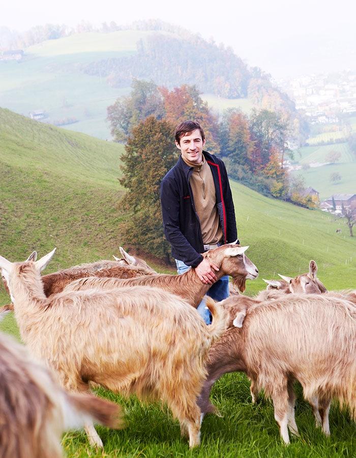 goat farm in switzerland, Toni Odermatt