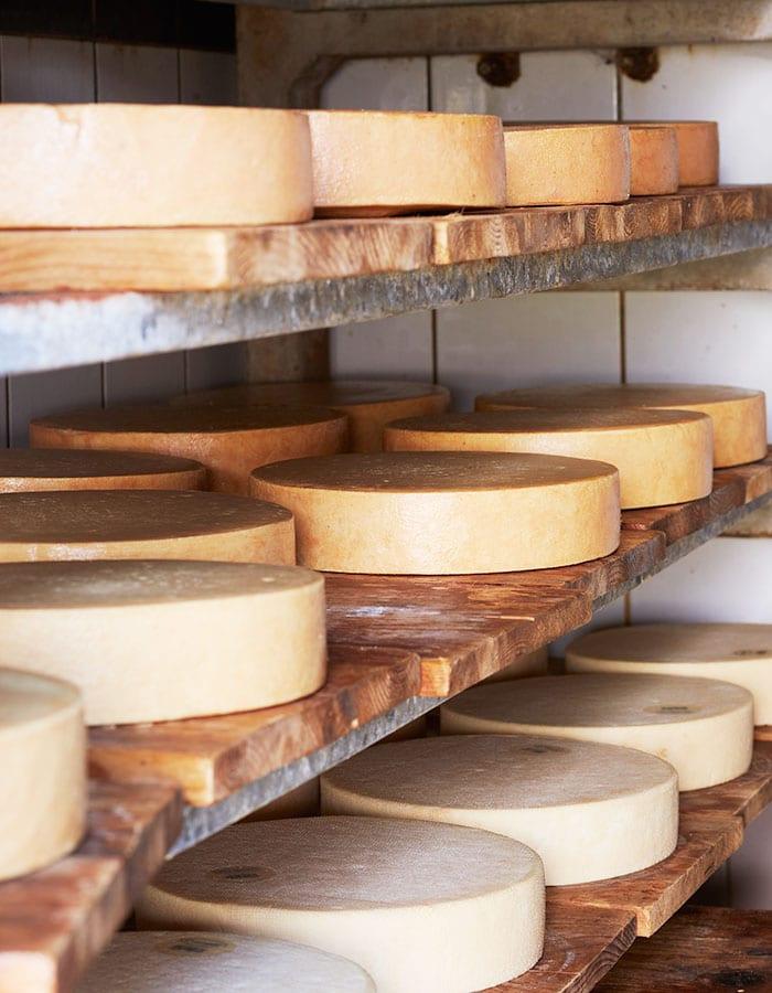 goat farm in switzerland, goat cheese